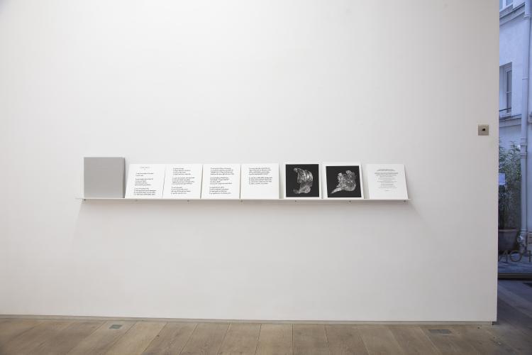 Pascal Convert, Georges Didi-Huberman, Livre d'artiste, 2019, 12 platine-paladium print and text by Georges Didi-Huberman, © galerie Eric Dupont, Paris