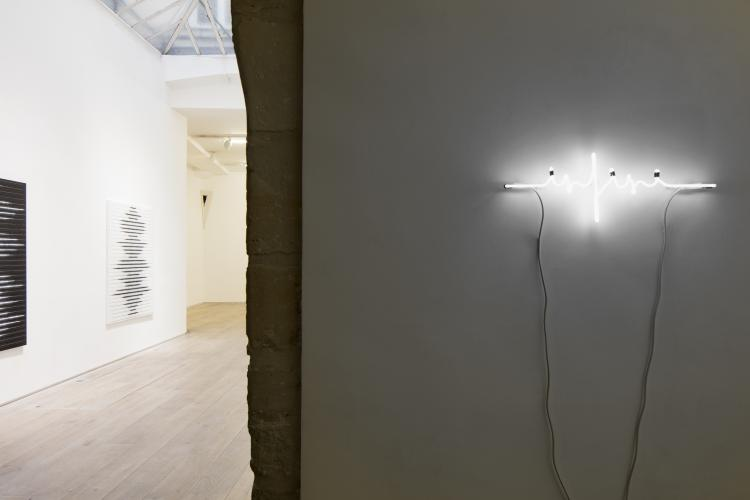 Yazid Oulab,<br /> Exhibition view at Eric Dupont gallery,<br /> &copy; galerie Eric Dupont, Paris