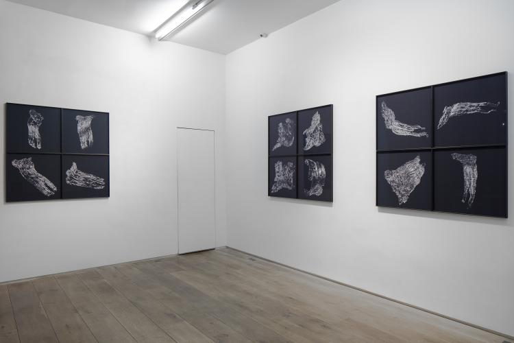 Pascal Convert<br /> Three trees, exhibition view, 2019<br /> © galerie Eric Dupont, Paris.